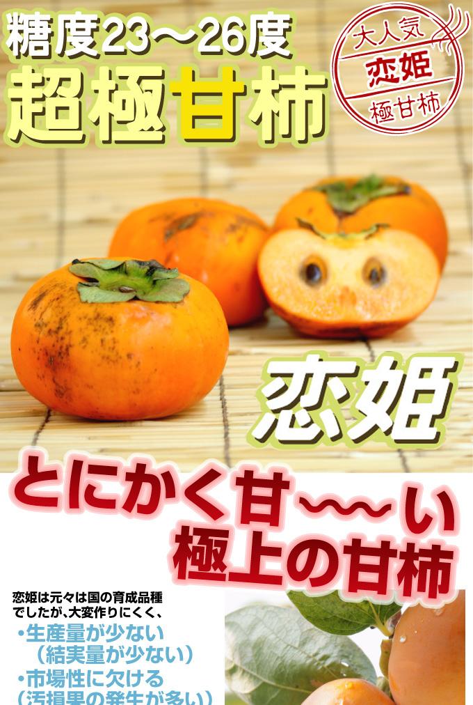 甘柿の木 恋姫