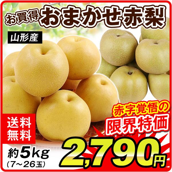 山形産おまかせ梨約5kg