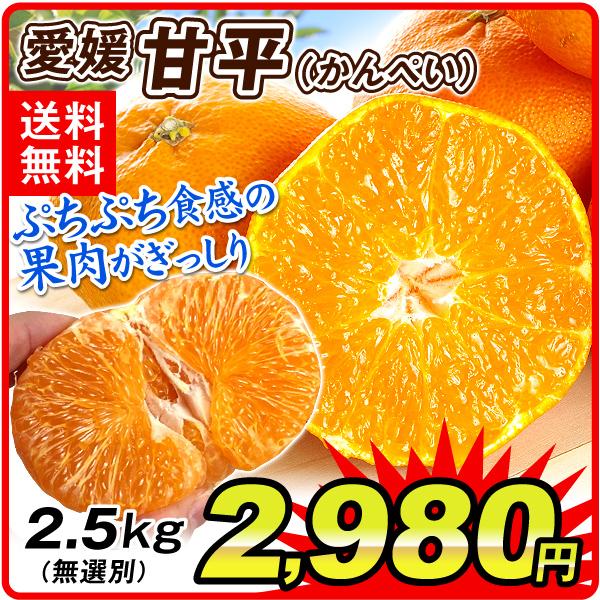 愛媛甘平2.5kg