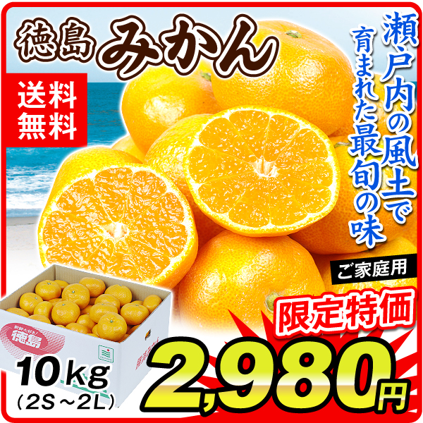 徳島みかん10kg