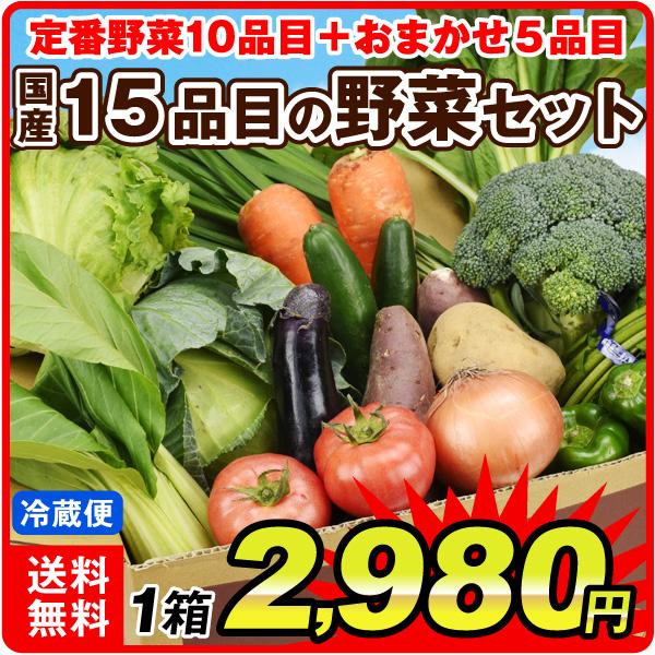 国産15品目野菜セット