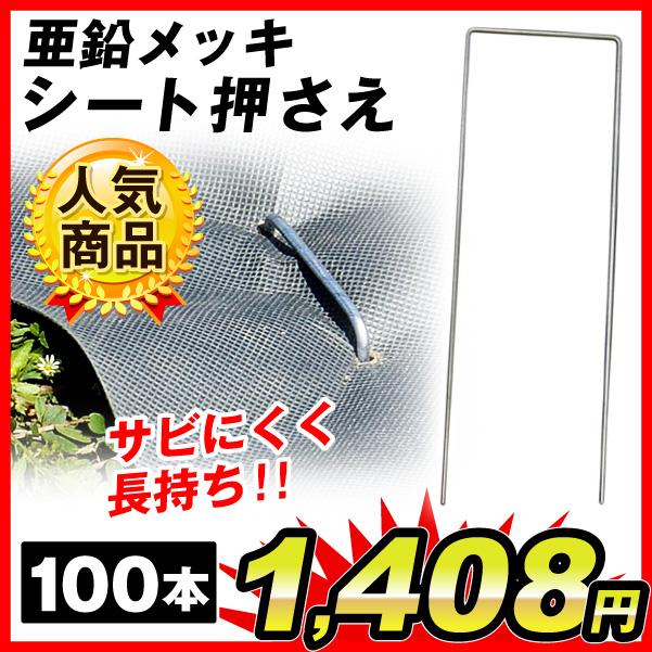亜鉛メッキ100本