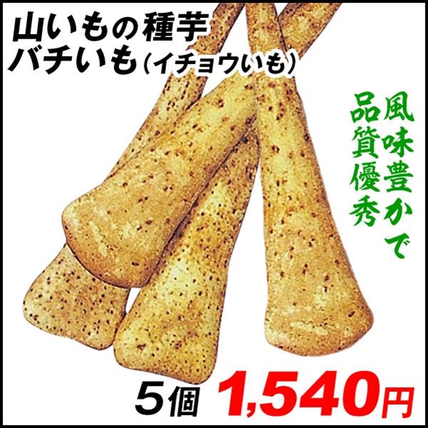 バチいも 山芋△     5個