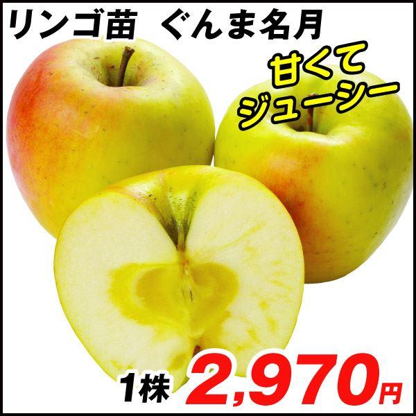 リンゴ・ぐんま名月