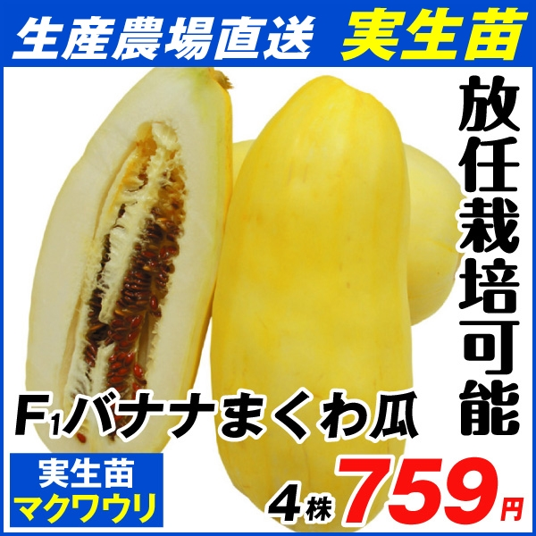 バナナまくわ瓜