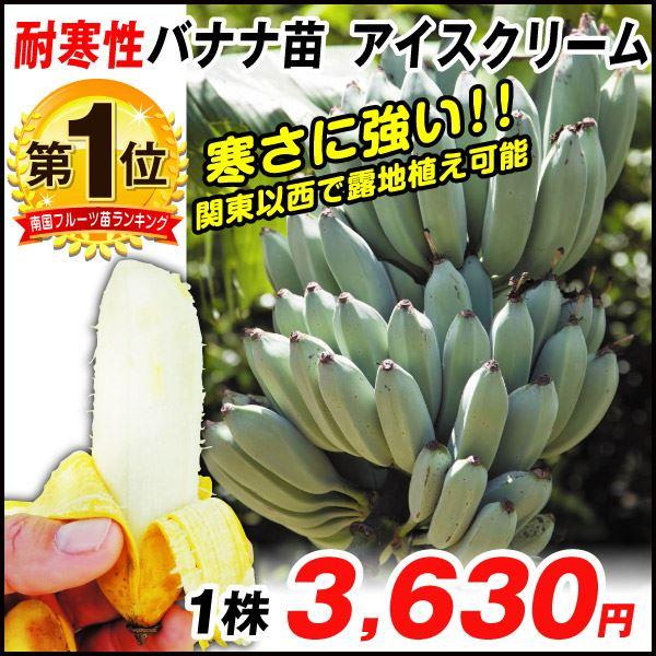 バナナ・アイスクリーム