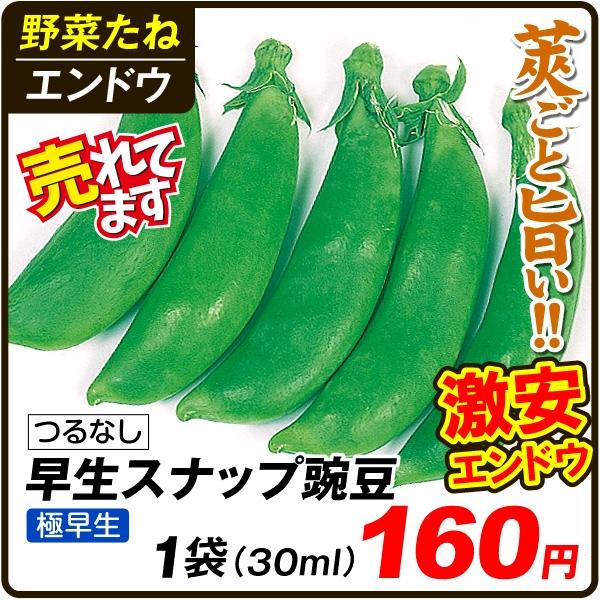 早生スナップ豌豆