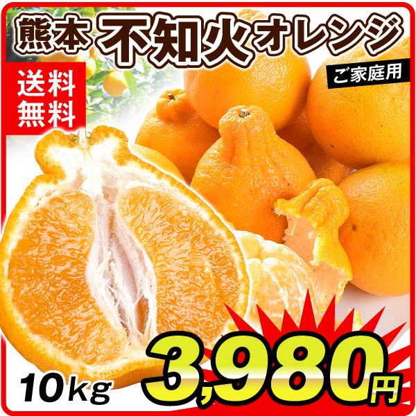 熊本不知火オレンジ10kg