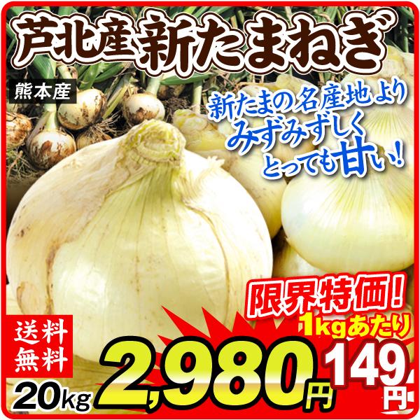芦北新たまねぎ20kg