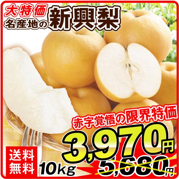 新興梨10kg