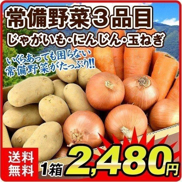 国産13品目野菜セット
