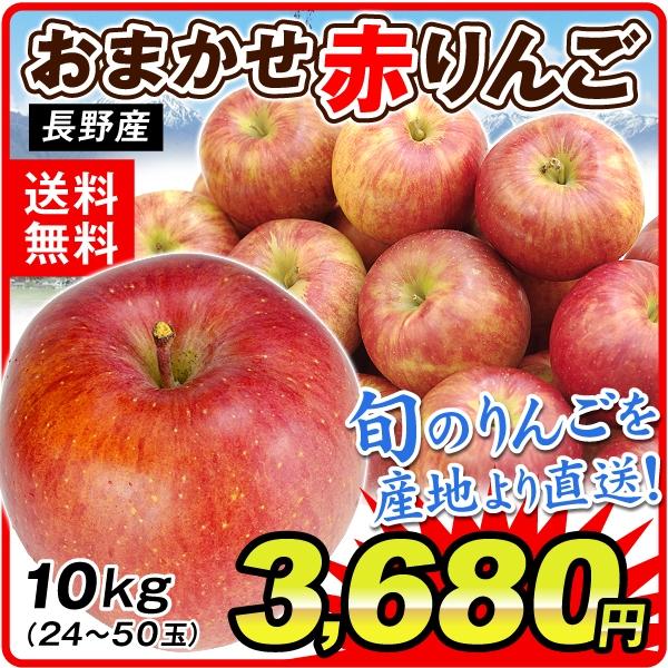 長野おまかせ赤りんご10kg