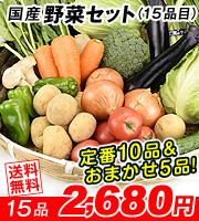 15品目野菜セット