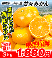 有田甘々みかん3kg
