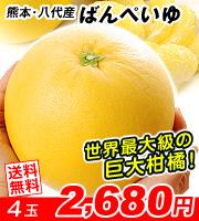 晩白柚4玉