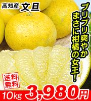 高知産文旦3980円