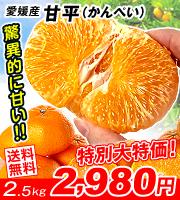愛媛甘平5kg