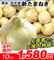 熊本芦北新たまねぎ10kg