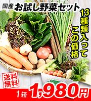 お試し野菜セット