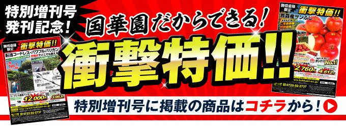 特別増刊号掲載商品コーナー
