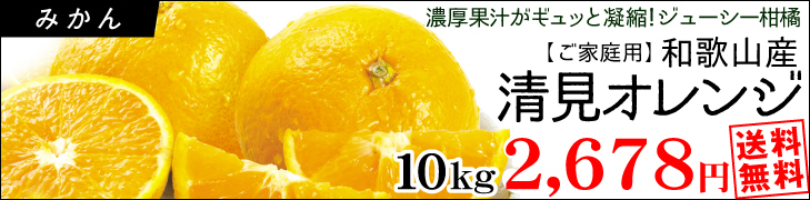清見オレンジ特別版10k
