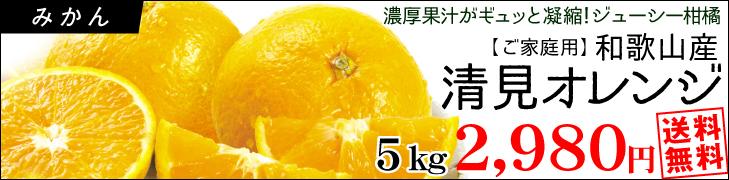 清見オレンジ5k