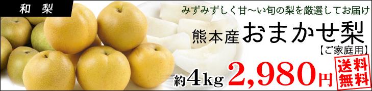 熊本おまかせ梨