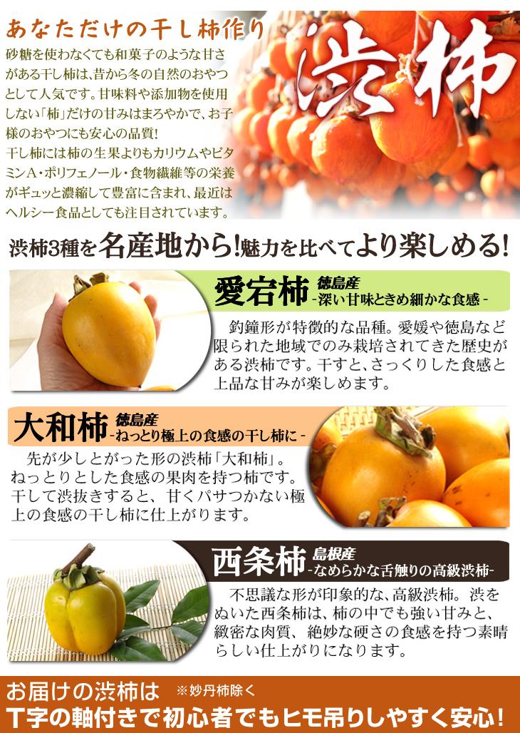 渋柿の紹介