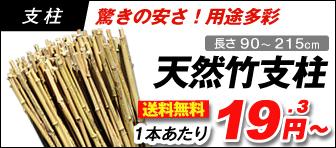 天然竹支柱