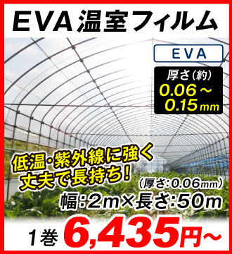 EVAフィルム