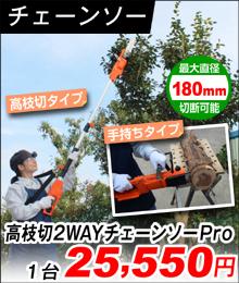 高枝切2-WAY電動チェーンソーPro