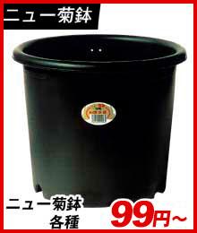 ニュー菊鉢
