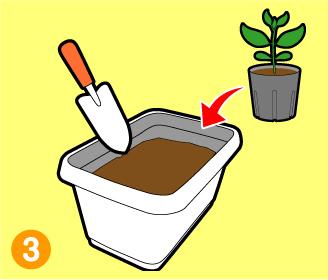 ふくらむ培養土使い方3