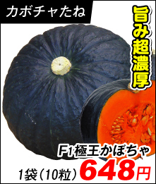極王かぼちゃ