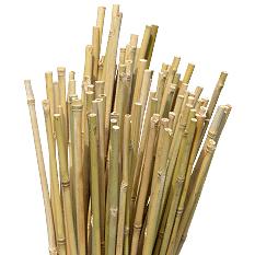 法人天然竹支柱