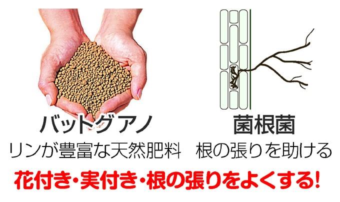 かる~い培養土配合肥料