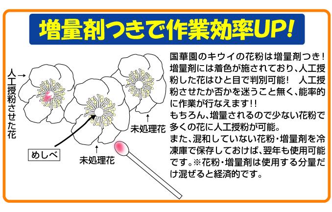 キウイの花粉は増量剤つきで作業効率UP