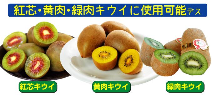 キウイの花粉は紅芯・黄肉・緑肉キウイのキウイに使用可能
