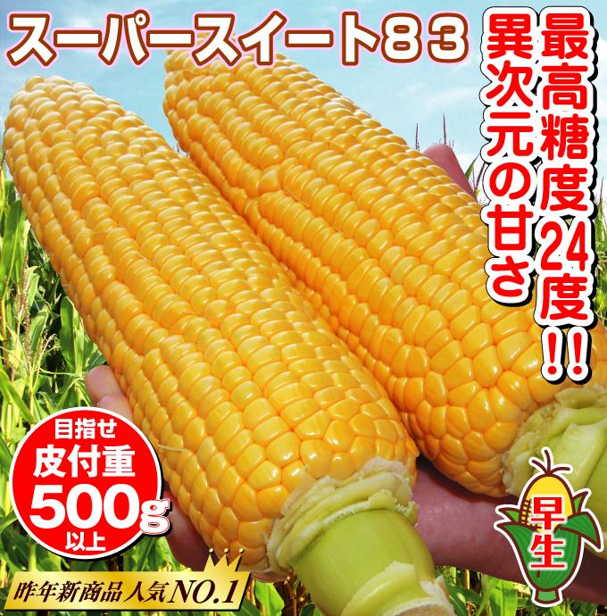 トウモロコシ・スーパースイート83