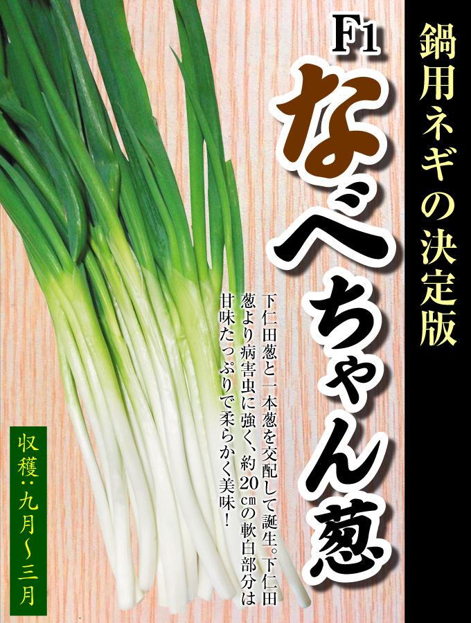 なべちゃん葱