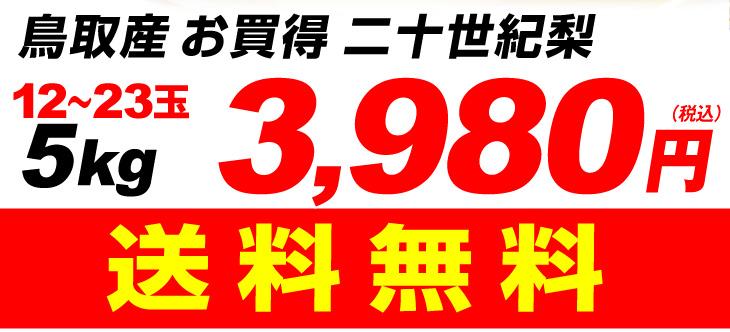 20世紀梨価格