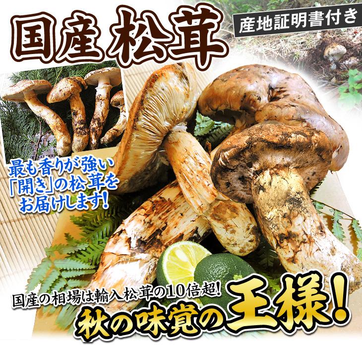 国産マツタケ・メイン