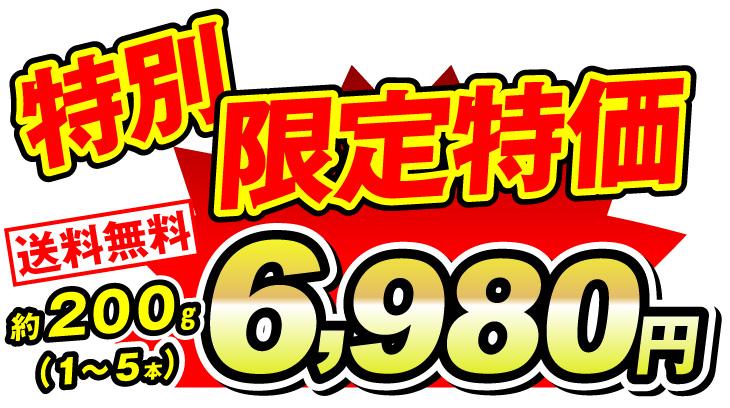 国産マツタケ価格6980円