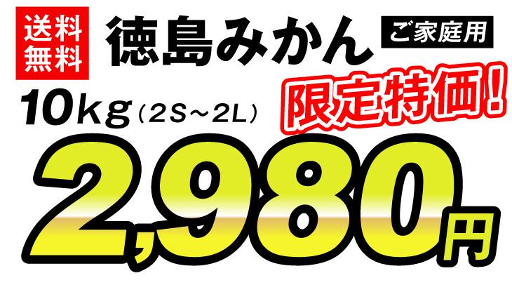 徳島みかん2980円