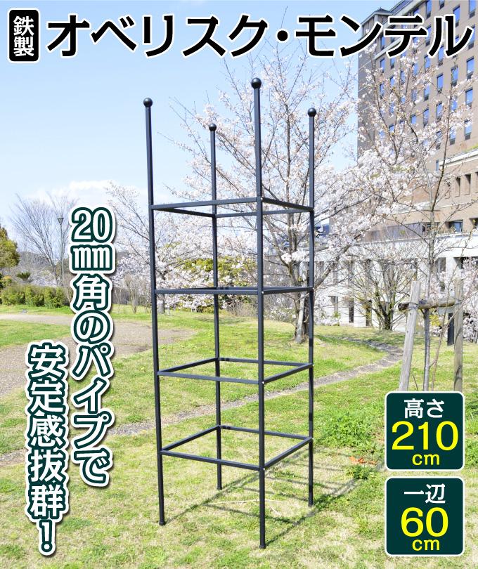 オベリスク・モンテル黒