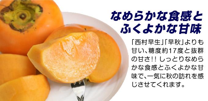 完全甘柿の苗 輝太郎 甘い