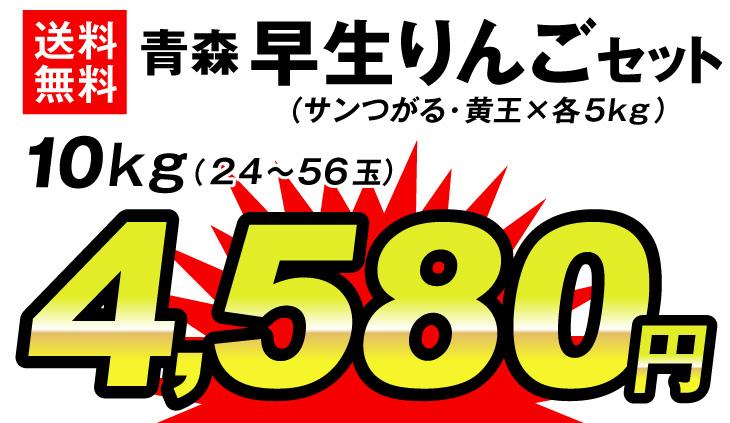 早生りんごセット・4980円