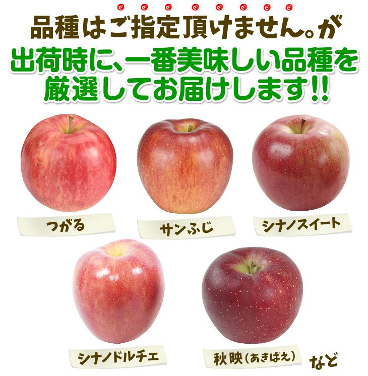 おまかせ赤りんご・品種一覧