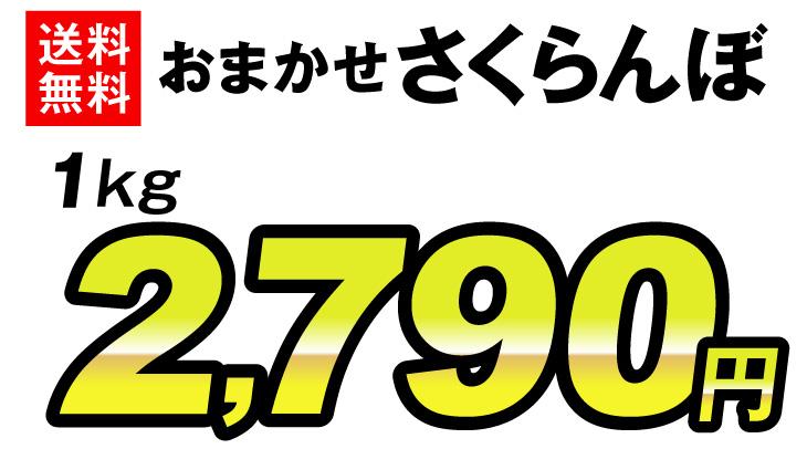 おまかせさくらんぼ・価格2780円