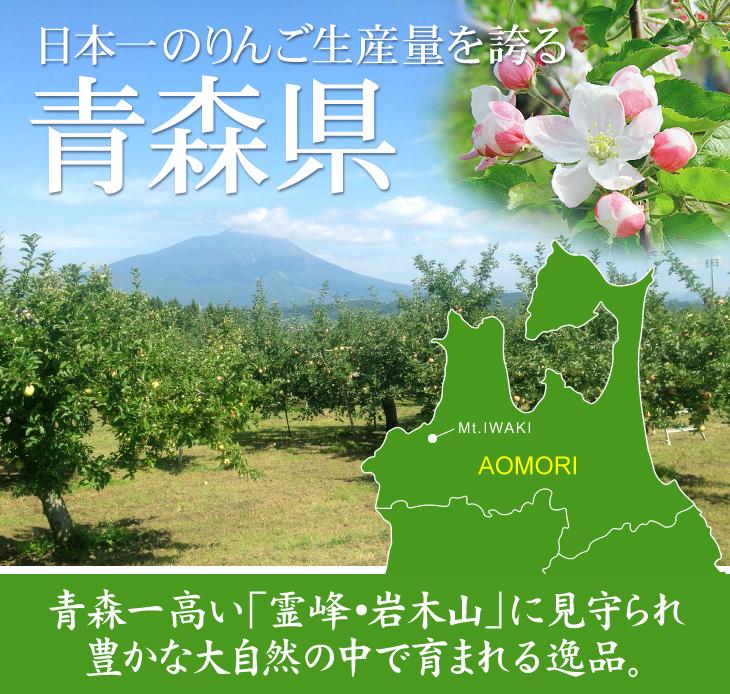 青森のりんご紹介01